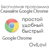 Браузер Google Chrome 2013 для компьютера - русская версия